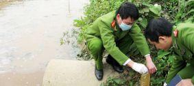 Xử phạt vi phạm hành chính trong lĩnh vực môi trường